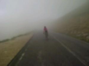11juni2012_11_Gorilla in de mist