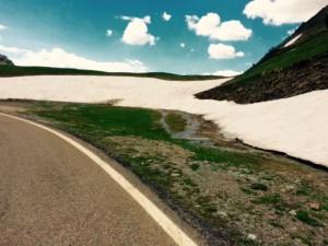 Juni 2, 2015 Langs de sneeuw (9)